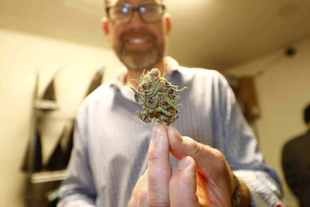 Tim Cullen, chief executive officer of the Colorado Harvest Company, holds up a marijuana bud ready for sale in Denver in 2017. (AP Photo/David Zalubowski)