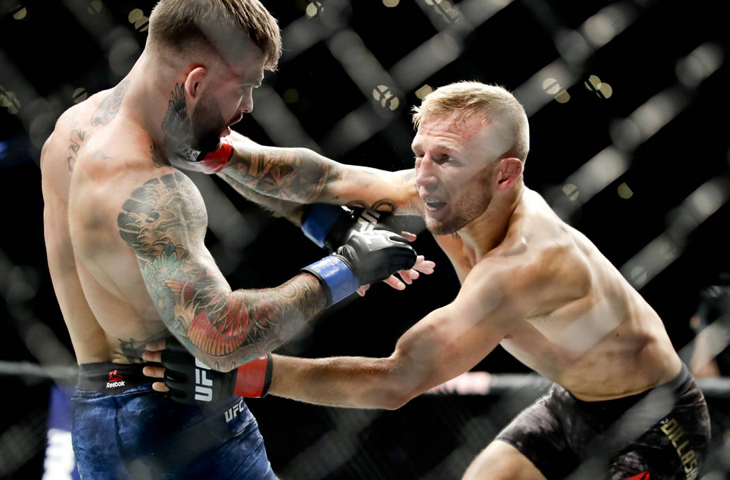 T.J. Dillashaw, right, hits Cody Garbrandt during their UFC title bantamweight mixed martial arts bout at UFC 227 in Los Angeles, Saturday, Aug. 4, 2018. (AP Photo/Chris Carlson)