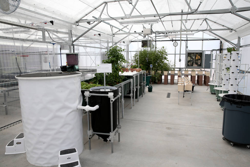 Williams Research Greenhouse at Faith Lutheran Middle School and High School in Las Vegas Friday, Aug. 10, 2018. K.M. Cannon Las Vegas Review-Journal @KMCannonPhoto