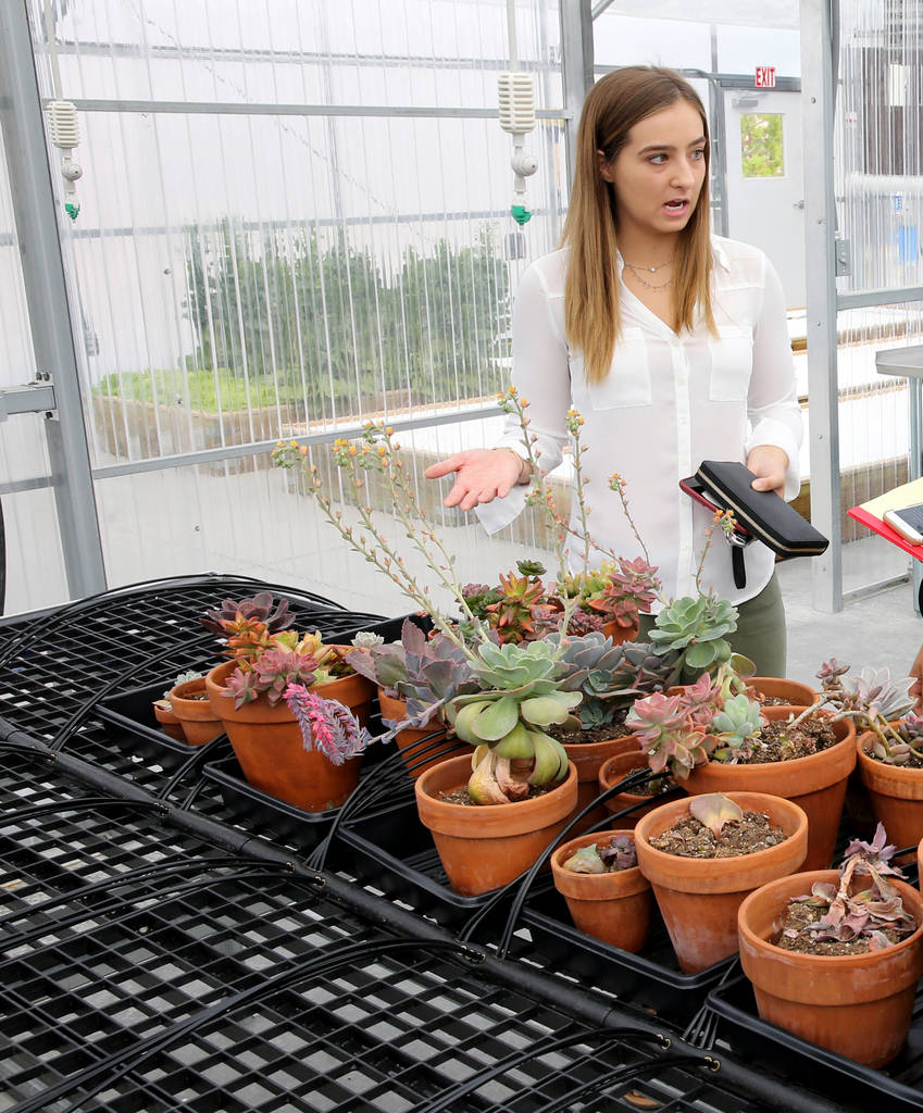 Graduate Lauren Carter, 18, gives a tour of Williams Research Greenhouse at Faith Lutheran Middle School and High School in Las Vegas Friday, Aug. 10, 2018. K.M. Cannon Las Vegas Review-Journal @K ...