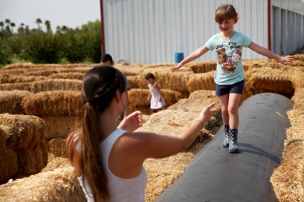 Katrina Regan plays with her daughter Allie, 4, at Gilcrease Orchard in Las Vegas, Saturday, Aug. 11, 2018. Erik Verduzco Las Vegas Review-Journal @Erik_Verduzco