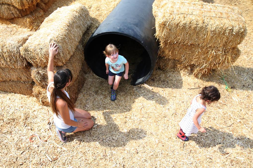 Katrina Regan, from left, plays with her daughters Allie, 4, and Savannah, 2, at Gilcrease Orchard in Las Vegas, Saturday, Aug. 11, 2018. Erik Verduzco Las Vegas Review-Journal @Erik_Verduzco