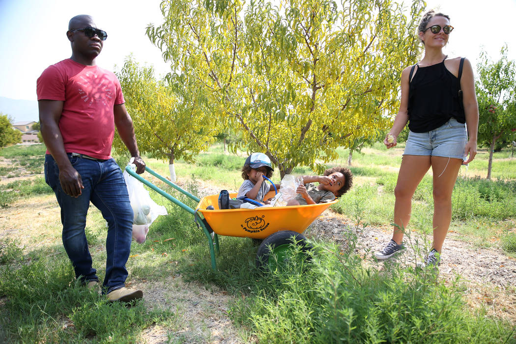 Sunday Ajayi, from left, with his children Ayotunde, 3, Olamide, 4, and wife Jill, during a visit to Gilcrease Orchard to pick fruit in Las Vegas, Saturday, Aug. 11, 2018. Erik Verduzco Las Vegas ...