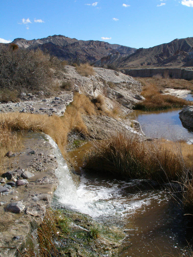 The Amargosa River winds its way through a canyon near China Ranch Date Farm on its way to Death Valley. Henry Brean Las Vegas Review-Journal