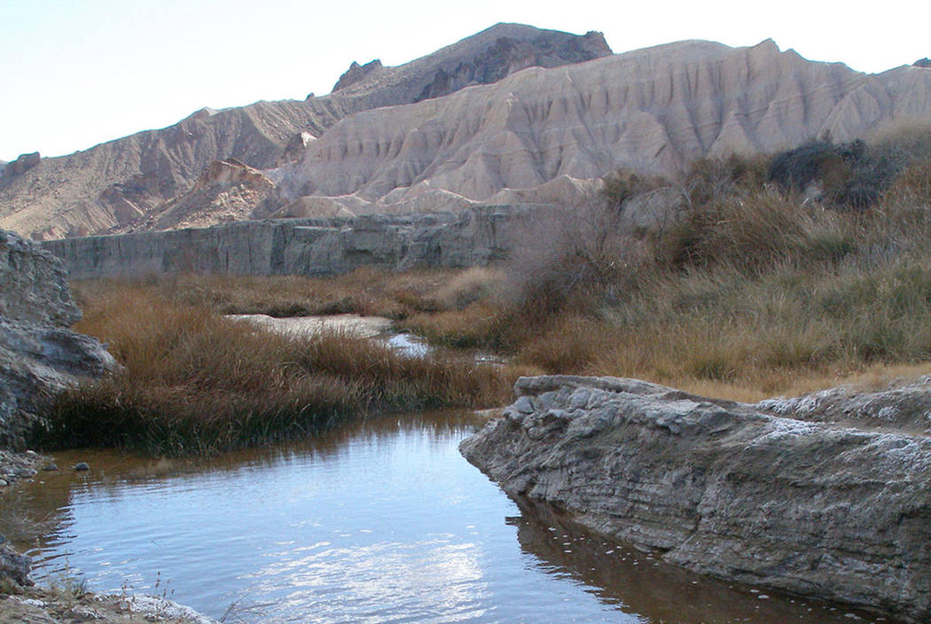 The Amargosa River winds its way through a canyon near China Ranch Date Farm on its way to Death Valley. (Henry Brea/Las Vegas Review-Journal)