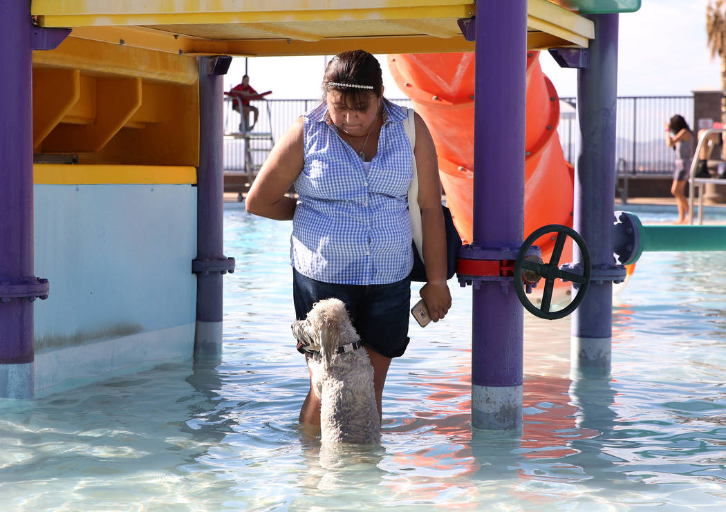 "Matty Mia plays with her dog Drake during the annual ""Dog Daze of Summer"" event at Desert Breeze Aquatics Facility on Saturday, Sept. 1, 2018, in Las Vegas. (Bizuayehu Tesfaye/Las Ve ..."