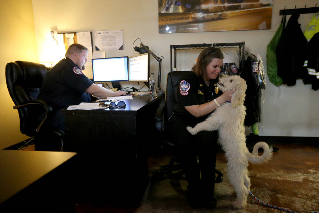 Trainer Megan LeClair works with Mercy, a therapy dog in training, at American Medical Response and MedicWest headquarters in Las Vegas Wednesday, Sept. 5, 2018. At left is Operations Supervisor H ...
