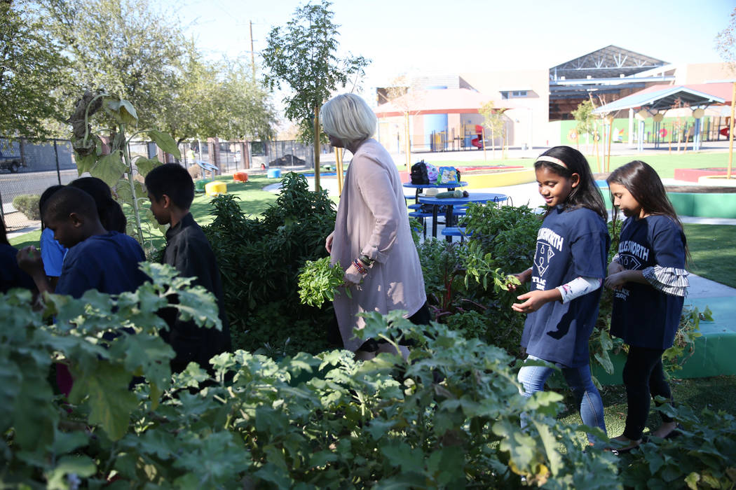 Gina Gavan, center, founder of Project Dinner Table, visits the Hollingsworth Elementary School garden in Las Vegaswith students, Friday, Sept. 7, 2018.ErikVerduzcoLas Vega ...