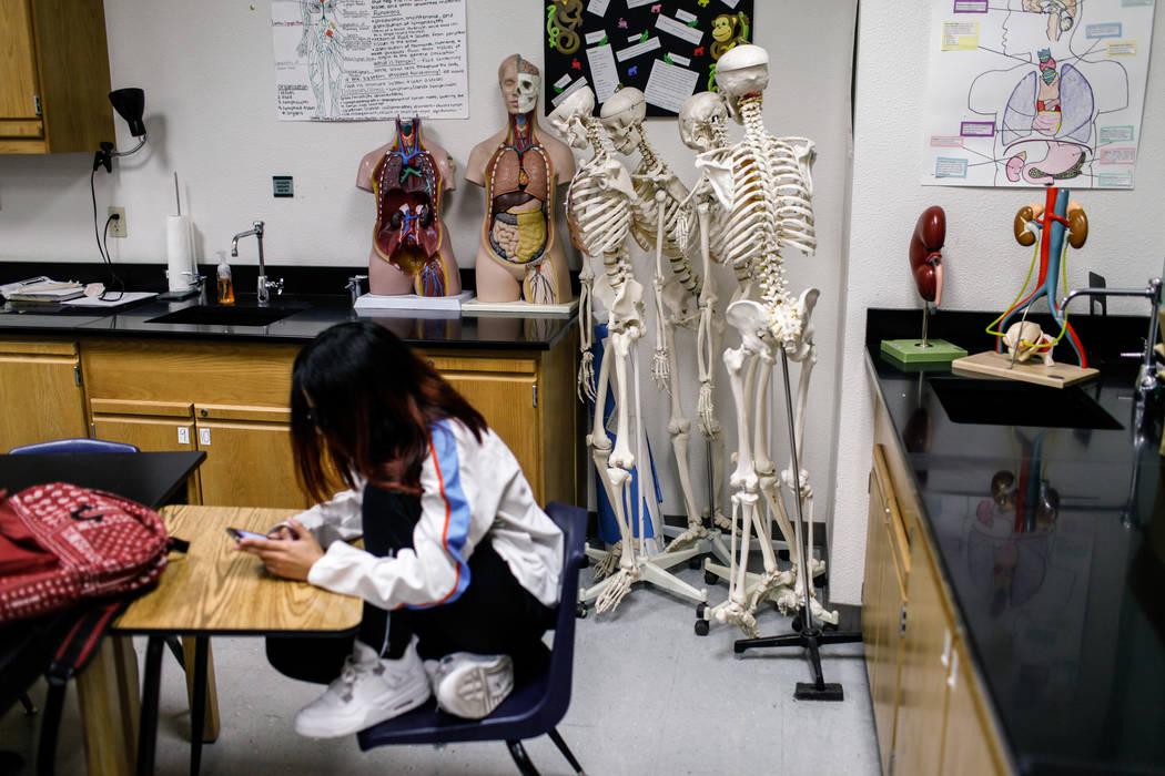 A student sits in a science class at Centennial High School in Las Vegas, Thursday, Nov. 9, 2017. Joel Angel Juarez Las Vegas Review-Journal @jajuarezphoto