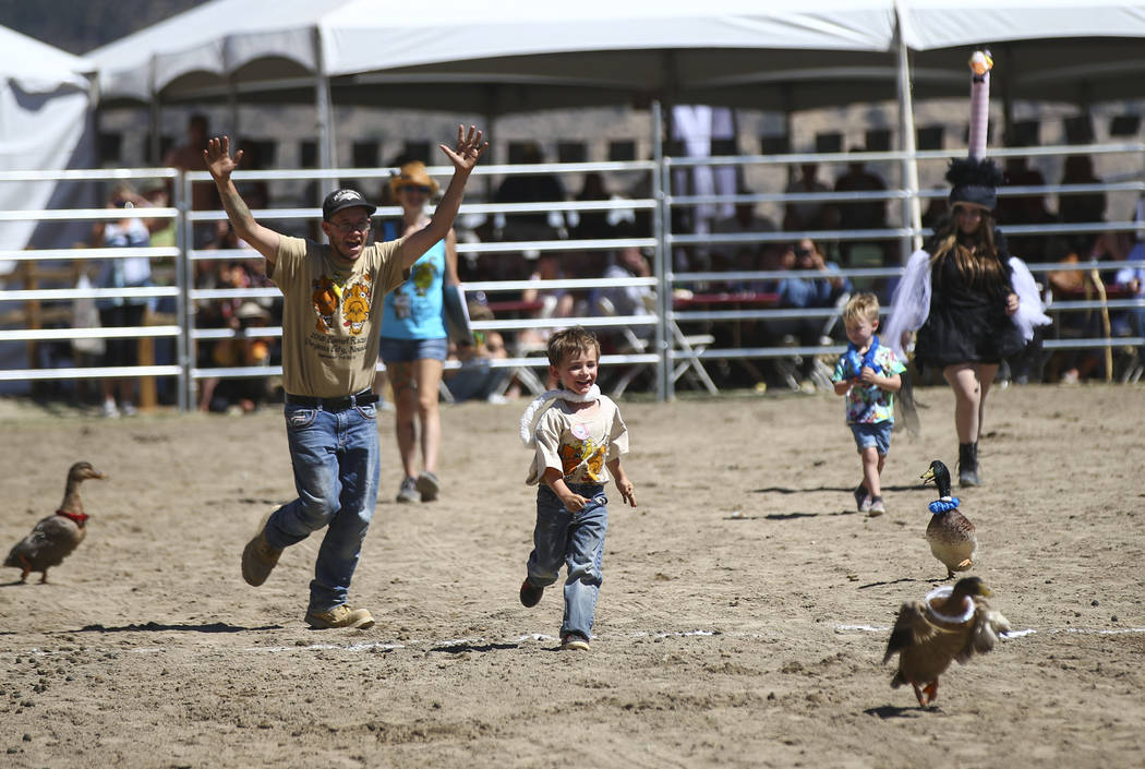 Memphis McGlynn, 4, with the help of Brade Emmans, chases a duck during first day of the 59th annual International Camel & Ostrich Races in Virginia City on Friday, Sept. 7, 2018. Chase Stevens La ...