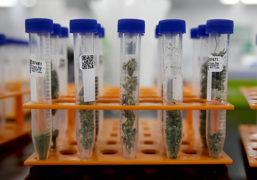 In this Wednesday, Aug. 22, 2018, photo, marijuana samples are organized at Cannalysis, a cannabis testing laboratory, in Santa Ana, Calif. Nearly 20 percent of the marijuana and marijuana product ...