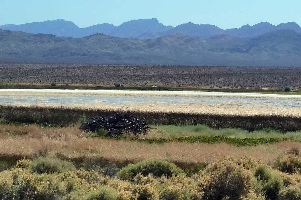 This photo of Lower Pahranagat Lake, taken on Monday, September 10, 2018, depicts the low water levels that currently exist on the Pahranagat National Wildlife Refuge. Typically, the dark aquatic ...