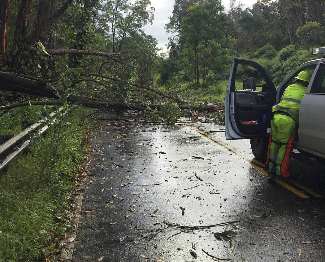 This photo provided by the Hawaii Department of Transportation shows tree limbs that have blocked the Hana Highway near Hana on the island of Maui Wednesday, Sept. 12, 2018. (Hawaii Department of ...