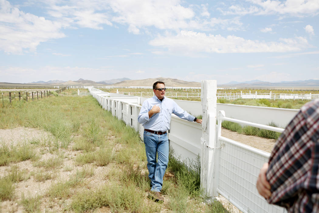 Director of the resources and facilities for the Southern Nevada Water Authority Zane Marshall shows the new sheep corral Great Basin Ranch in Dry Lake Valley, Monday, Aug. 7, 2017. Elizabeth Brum ...