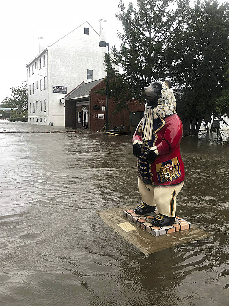 In this photo released by the City of New Bern, N.C., a bear statue floats in flood waters on South Front street in New Bern, N.C. on Friday, Sept. 14, 2018. Hurricane Florence lumbered ashore in ...