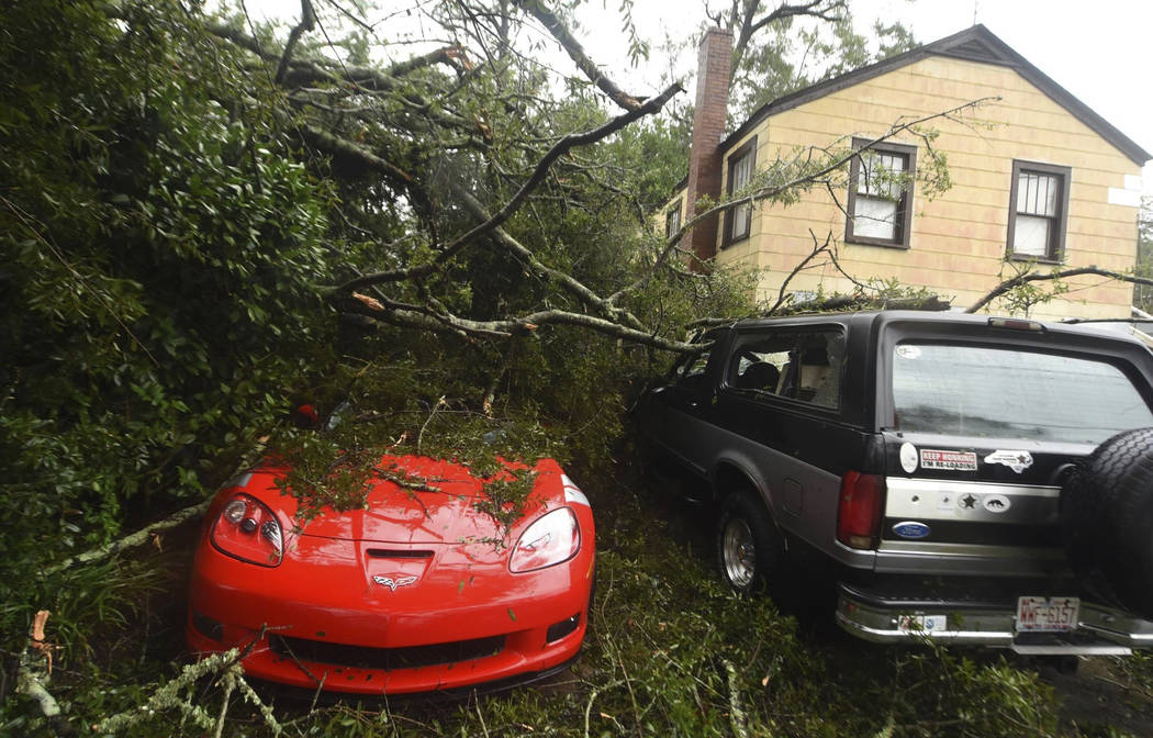 A fallen tree from Florence, now a tropical storm, covers several cars in Wilmington, N.C., Saturday, Sept.15, 2018. (Matt Born/The Star-News via AP)