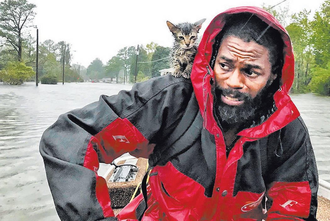 "Robert Simmons Jr. and his kitten ""Survivor"" are rescued from floodwaters after Hurricane Florence dumped several inches of rain in the area overnight, Friday, Sept. 14, 2018 in New Bern ..."