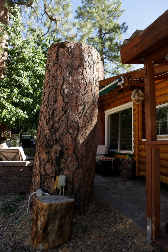 The stump of a 100-foot-tall Ponderosa pine that was estimated to be 300-years-old is all that remains next to the Mount Charleston home of Rose Meranto on Monday, September 17, 2018, after she wa ...
