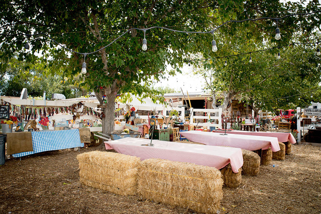 The private ranch holds a fall festival every year. (Tonya Harvey Real Estate Millions)