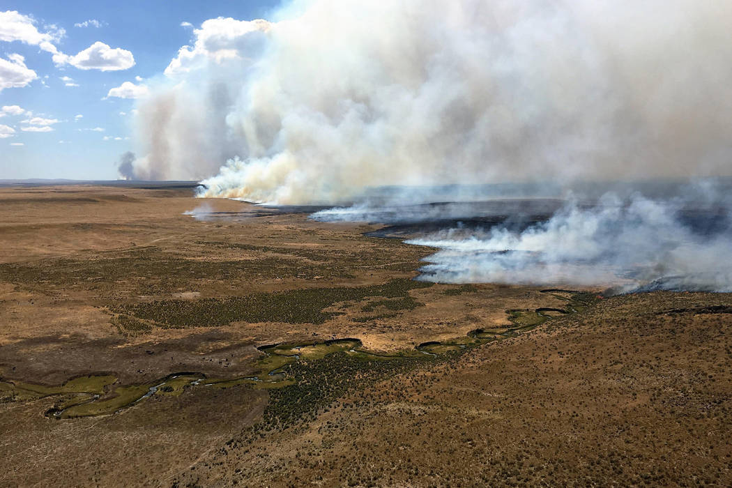 The northern flank of the Martin Fire in Northern Nevada is seen from the air July 10. The nearly 450,000-acre fire highlights the danger posed by invasive species, Gov. Brian Sandoval said Monday ...