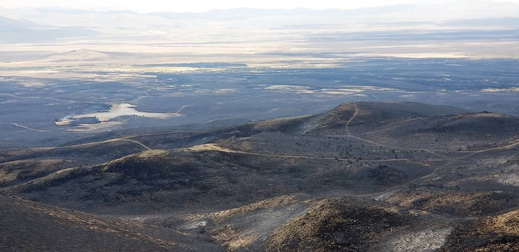 An aerial view of damage caused by the now extinguished South Sugarloaf Fire in Elko county. Public lands managed by the U.S. Forest Service are now open to public access, good news for big game t ...