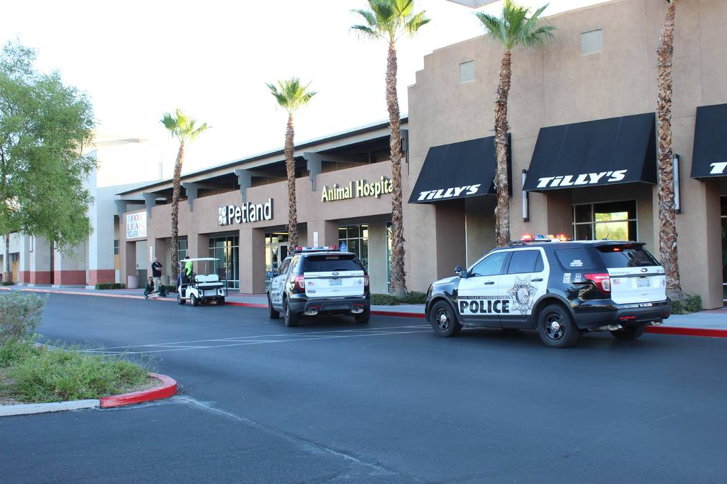 Police investigate Friday, Sept. 28, after a man broke into a Boca Park pet store and stole two puppies. (Max Michor/Las Vegas Review-Journal)
