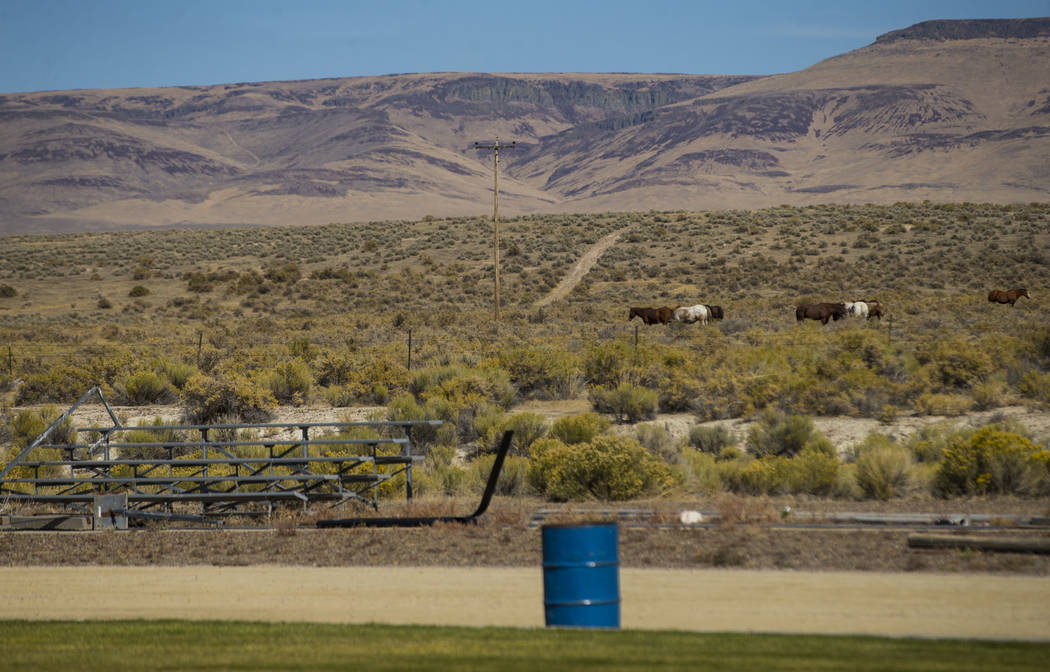 Horses graze just over the Oregon border as seen from the McDermitt High School football field, which also technically lies in Oregon, at the school in McDermitt on Tuesday, Sept. 25, 2018. Chase ...