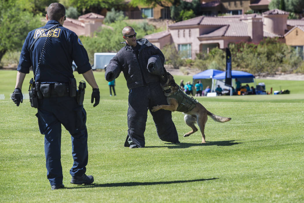 Some of the Las Vegas Metro K9 Trials Weekend and other activities will be held at Lake Las Vegas this year. (Lake Las Vegas)