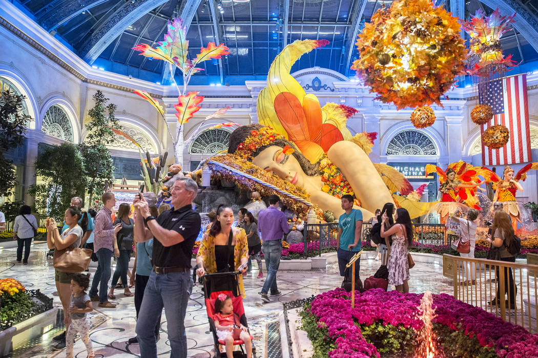 """Falling Asleep ,"" Bellagio Conservatory's fall-themed garden pictured on Tuesday, Oct. 2, 2018, at Bellagio, in Las Vegas. Benjamin Hager Las Vegas Review-Journal @benjaminhphoto"