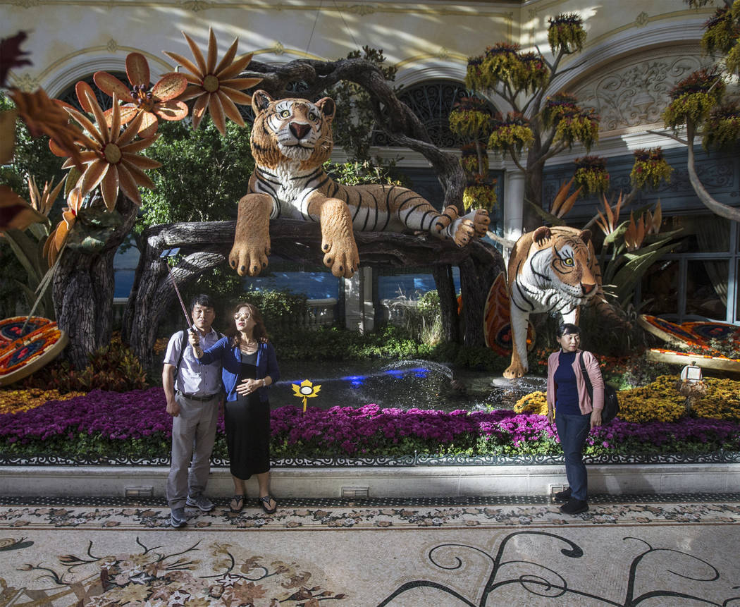 """Falling Asleep,"" Bellagio Conservatory's fall-themed garden pictured on Tuesday, Oct. 2, 2018, at Bellagio, in Las Vegas. Benjamin Hager Las Vegas Review-Journal @benjaminhphoto"
