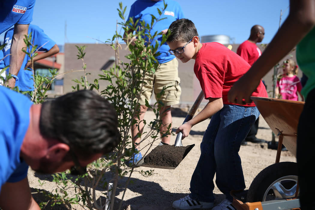 Volunteers including fourth-grade-student Jaxson Peterson, 9, helps plant a tree at Forbuss Elementary School in Las Vegas as part of United Way of Southern Nevada's third annual Day of Caring, Fr ...