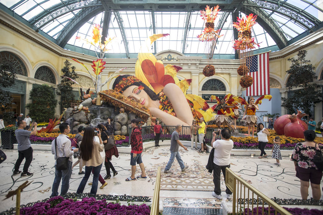 The Conservatory & Botanical Gardens on Tuesday, Oct. 2, 2018, at Bellagio, in Las Vegas. Benjamin Hager Las Vegas Review-Journal @benjaminhphoto