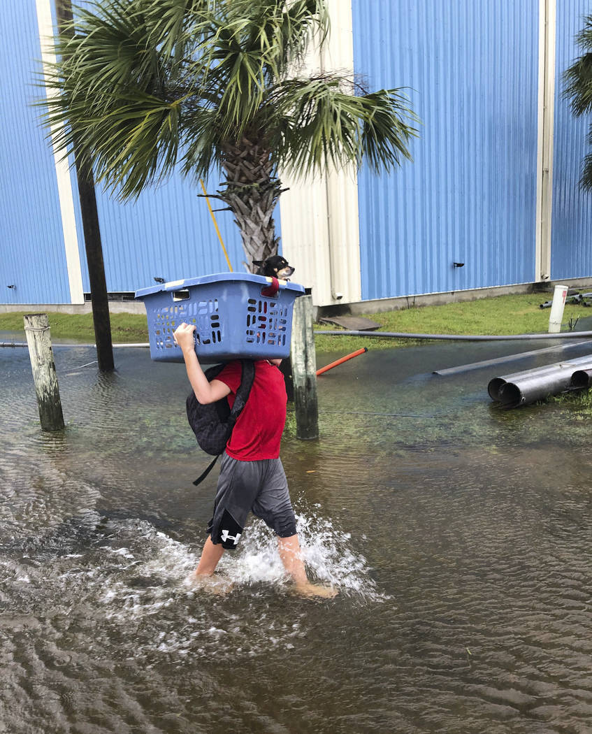 Jayden Morgan carries his dog through a flooded street in St. Marks, Fla., on Wednesday, Oct. 10, 2018, as his family evacuates at the last minute before Hurricane Michael hits the state. (AP Phot ...