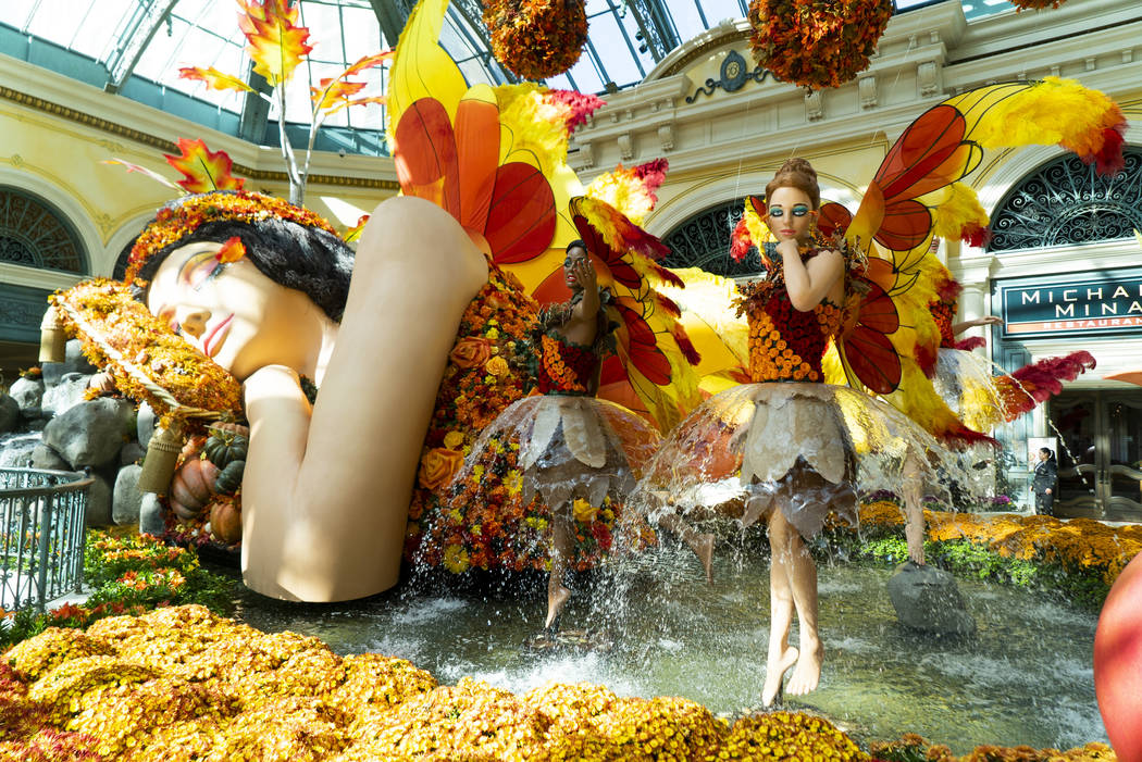 """Falling Asleep,"" Bellagio Conservatory's fall-themed garden photographed in Las Vegas, Monday, Sept. 17, 2018. (Marcus Villagran/Las Vegas Review-Journal) @marcusvillagran"
