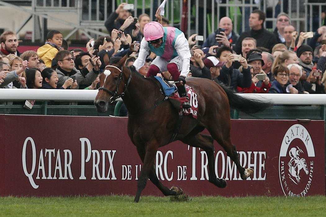 Euro filly Enable expected to chase Arc-Turf double in Breeders' Cup