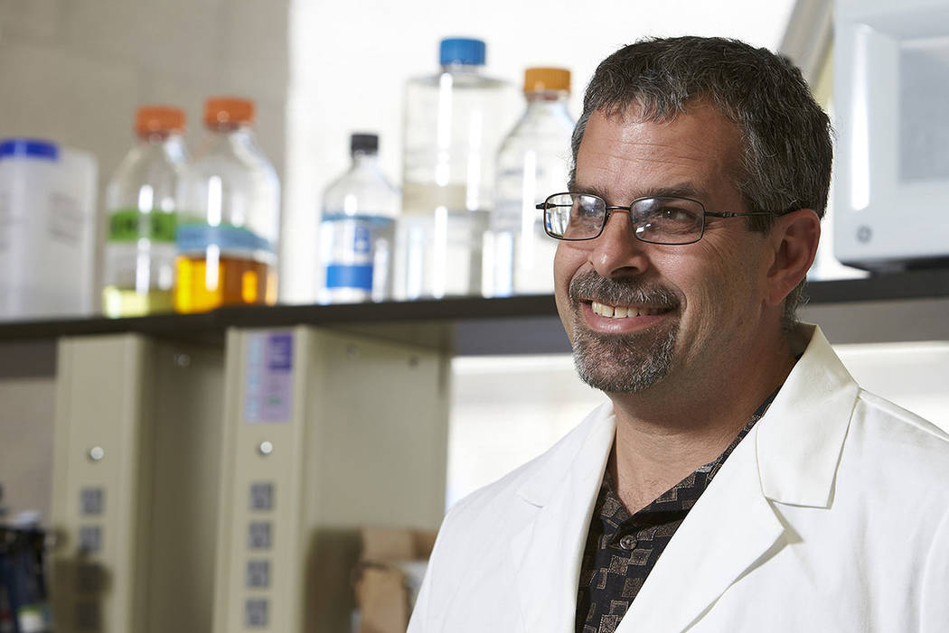 Martin Schiller is the founder of Heligenics and executive director of UNLV's Nevada Institute of Personalized Medicine. (Martin Schiller)