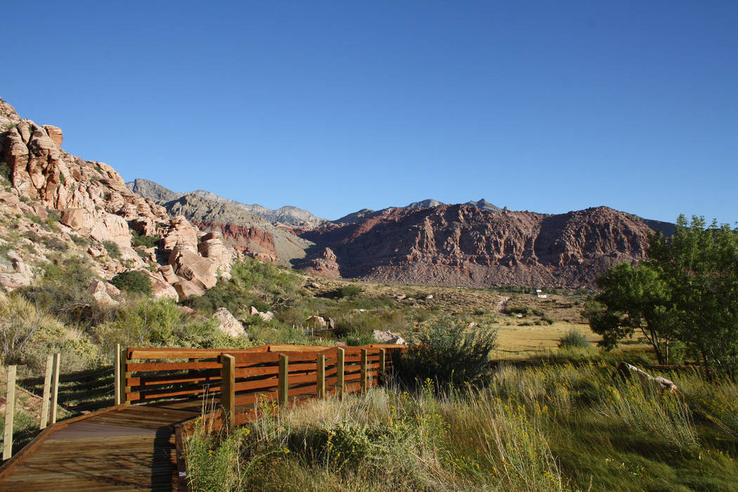 A boardwalk serves as your trail at the Calico Basin-Red Spring Interpretive Trail at Red Rock Canyon National Conservation Area. (Deborah Wall/Las Vegas Review-Journal)