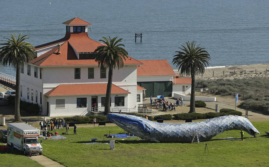 Artist Joel Deal Stockdill, lower right, works on a blue whale art piece made from discarded single-use plastic at Crissy Field Friday, Oct. 12, 2018, in San Francisco. (AP Photo/Eric Risberg)