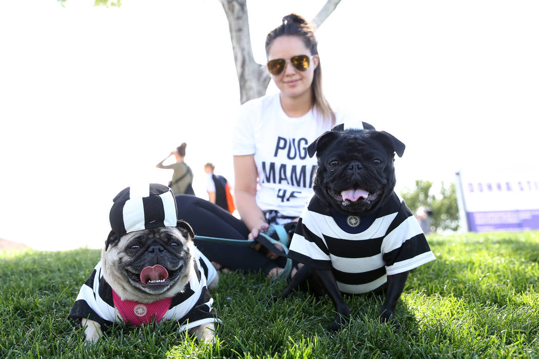 Courtney Lund of Las Vegas with her two dogs Bentley, left, and Mercedes Benz attend the Family, Fur & Fun Festival at Exploration Park in Las Vegas, Saturday, Oct. 13, 2018. Erik Verduzco Las ...