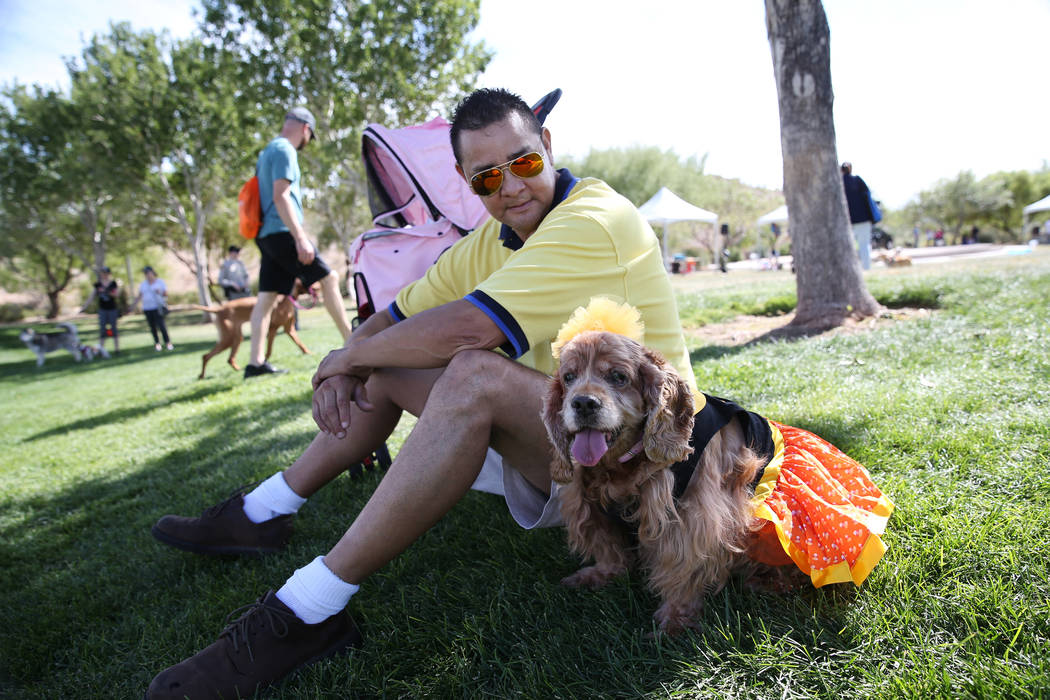 Jose Sota with her dog Baby, a 16-year-old cocker spaniel, attend the Family, Fur & Fun Festival at Exploration Park in Las Vegas, Saturday, Oct. 13, 2018. Erik Verduzco Las Vegas Review-Journ ...