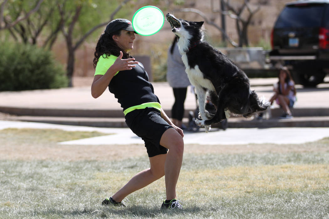 Michele Hood, team member for Atomic Dogs, performs tricks with Maverick, a 10-year-old border collie, during the Family, Fur & Fun Festival at Exploration Park in Las Vegas, Saturday, Oct. 13 ...