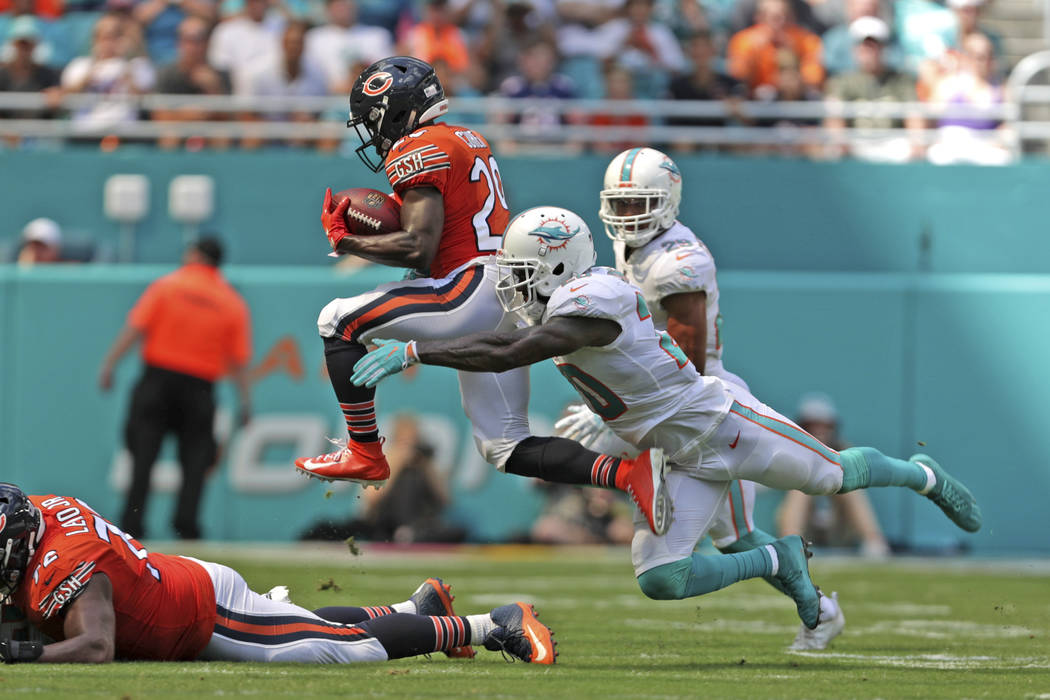 Chicago Bears running back Tarik Cohen tries to outrun Miami Dolphins safety Reshad Jones during an NFL football game, Sunday, Oct. 14, 2018, in Miami Gardens, Fla. (John McCall/South Florida Sun ...