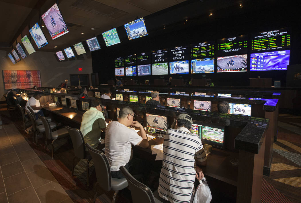 Sports betting rules vegas dons best sports betting