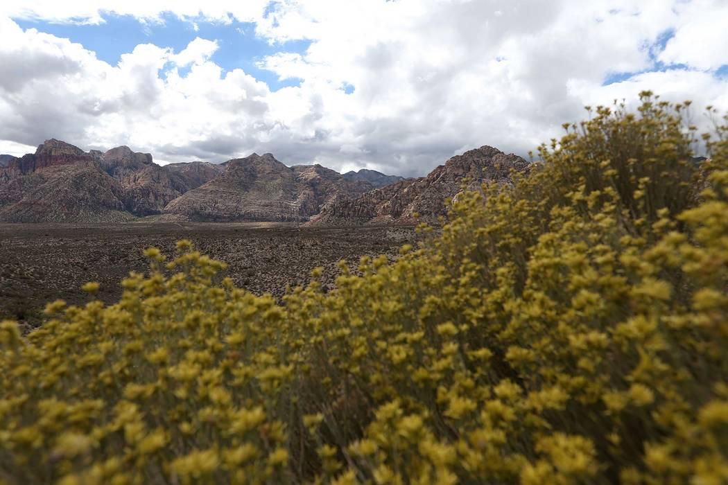 View of Red Rock Canyon in Las Vegas. (Erik Verduzco/Las Vegas Review-Journal) @Erik_Verduzco