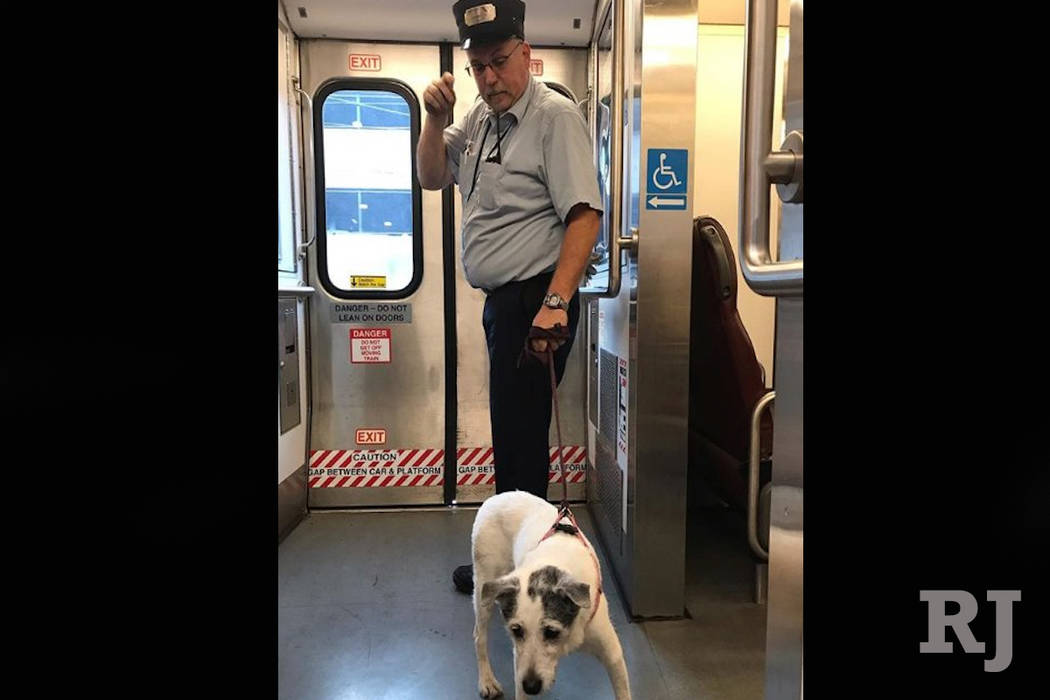 New Jersey Train Conductor Uses Tie To Rescue Dog On Tracks Las