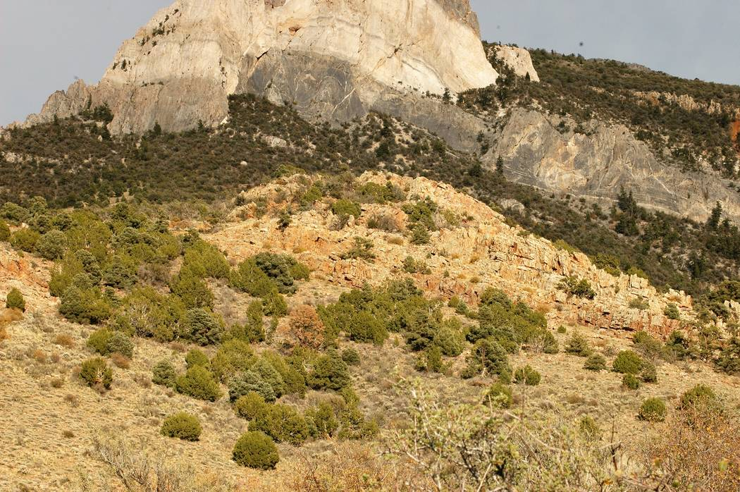 Mule deer and other big game species are creatures of habit. Every fall, migrating mule deer pass below this rocky outcropping on their way south. that makes this a place to spend some time during ...