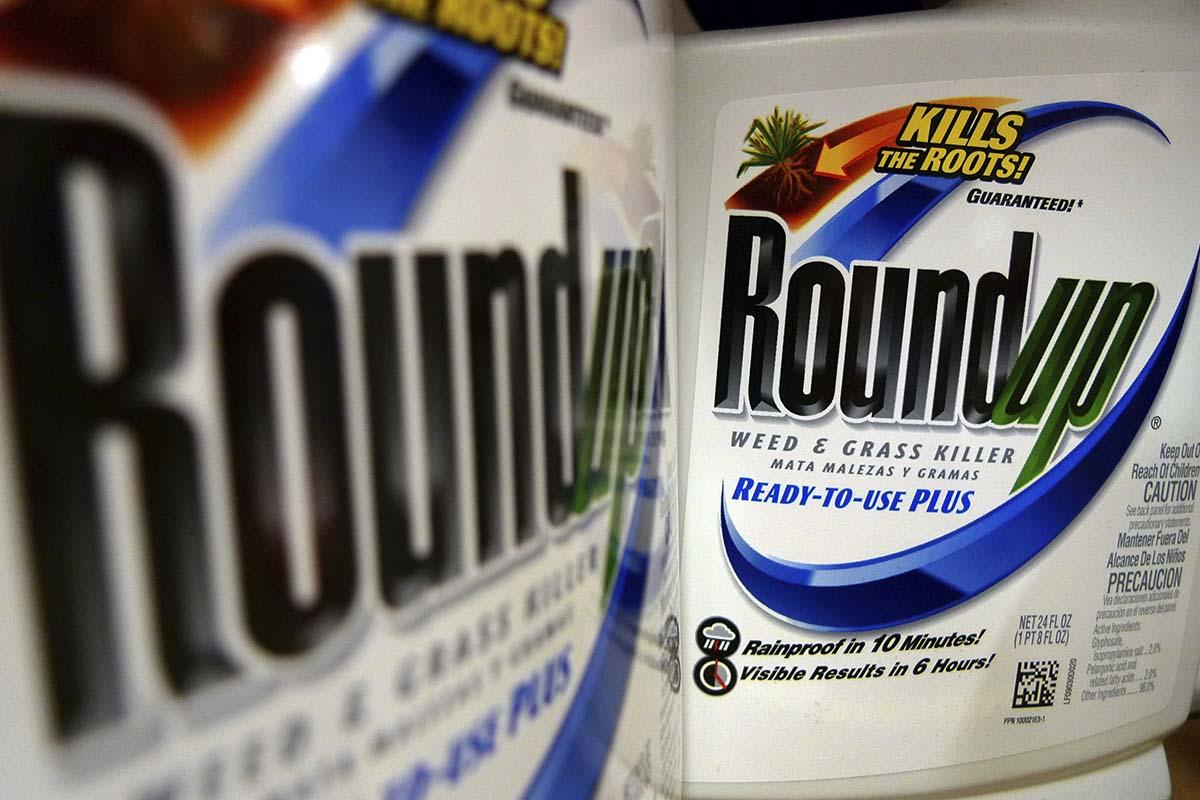 Judge may gut $289M award over Monsanto's Roundup weed-killer