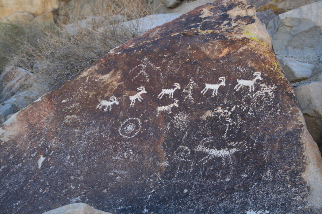 Many of the petroglyph panels feature abstract designs and symbols while others depict recognizable figures like bighorn sheep. (Deborah Wall)