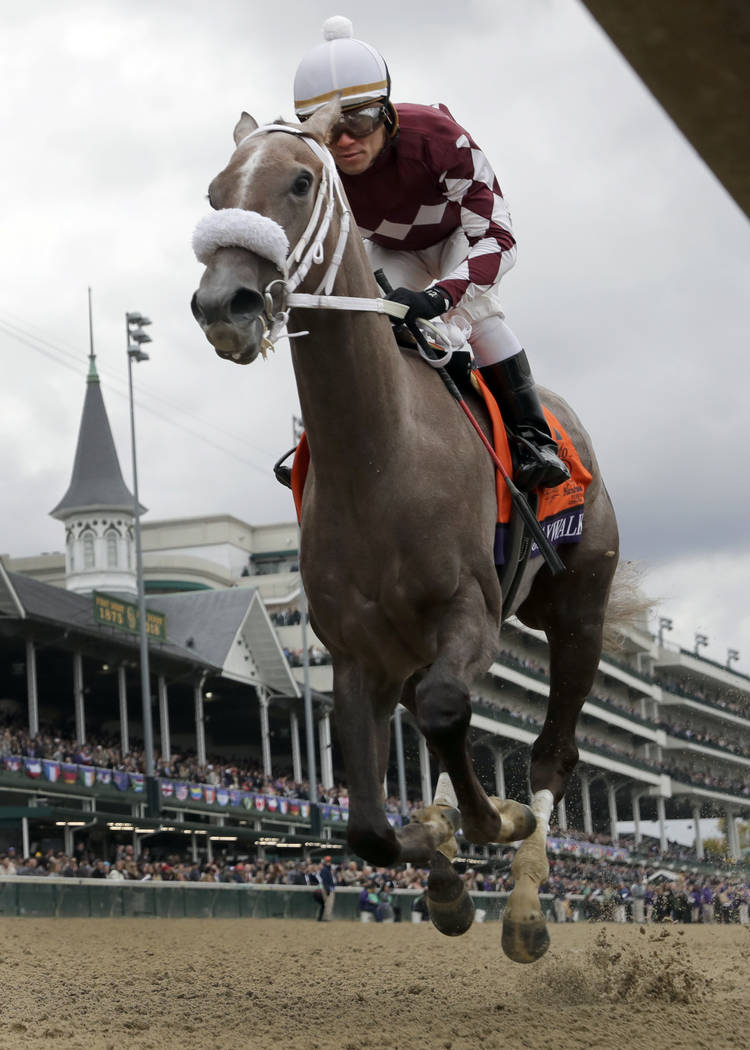 Game Winner Still Perfect After Breeders Cup Juvenile