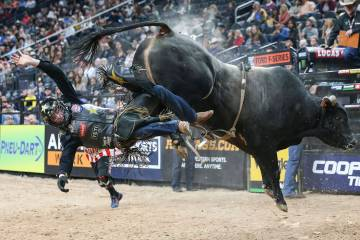 Pbr Professional Bull Riders Rodeo 2018 Las Vegas
